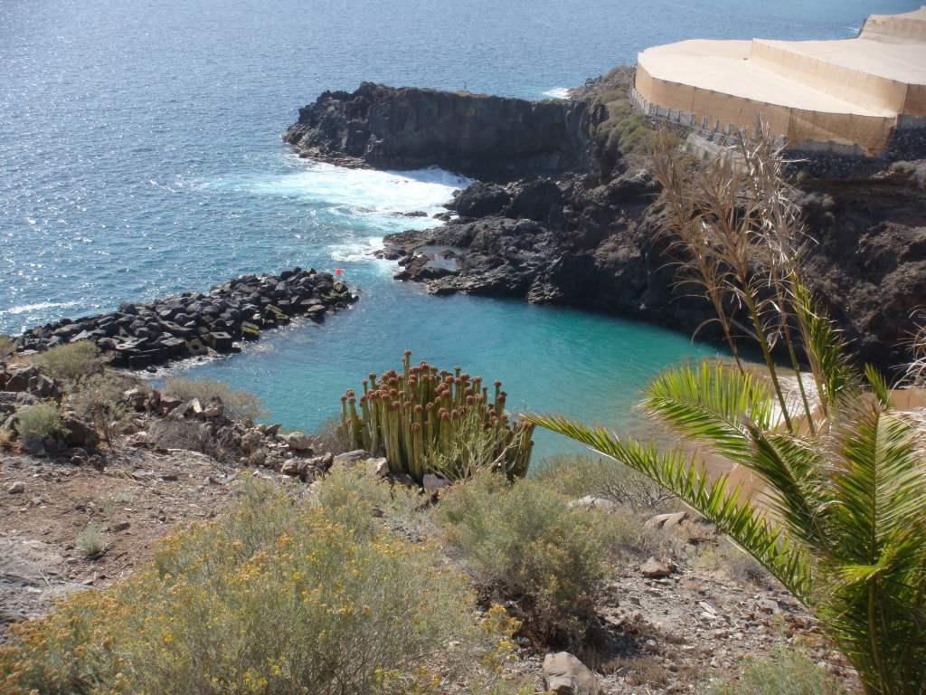 Tenerife l 39 isola d 39 oro itinerario sud di tenerife - Diversi tipi di turismo ...